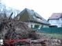 Baum auf Haus, Ebstorfer Straße  09.01.2015