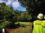 Großer Ast droht auf Gehweg zufallen  Parkanlage - Ilmenauwiesen 11.08.2019