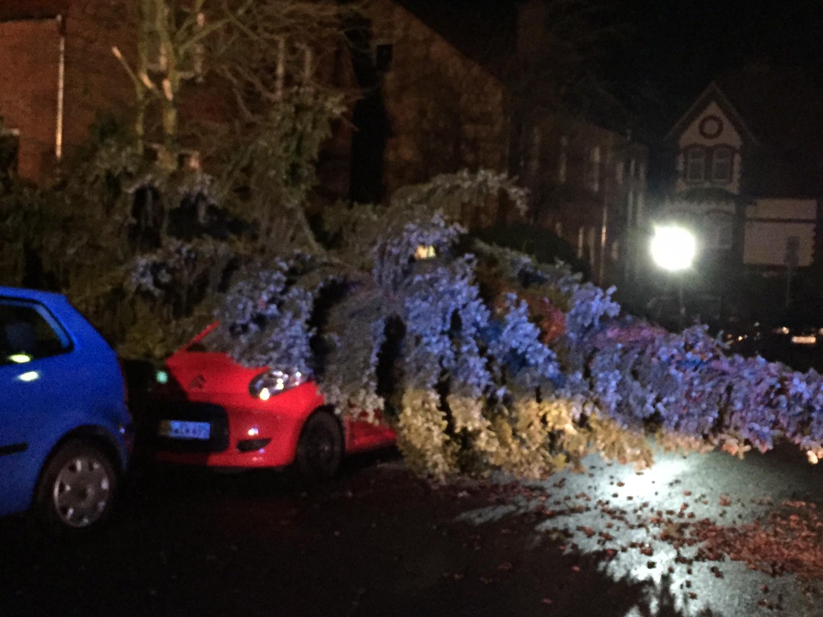 070. Sturmschaden - Baum auf PKW