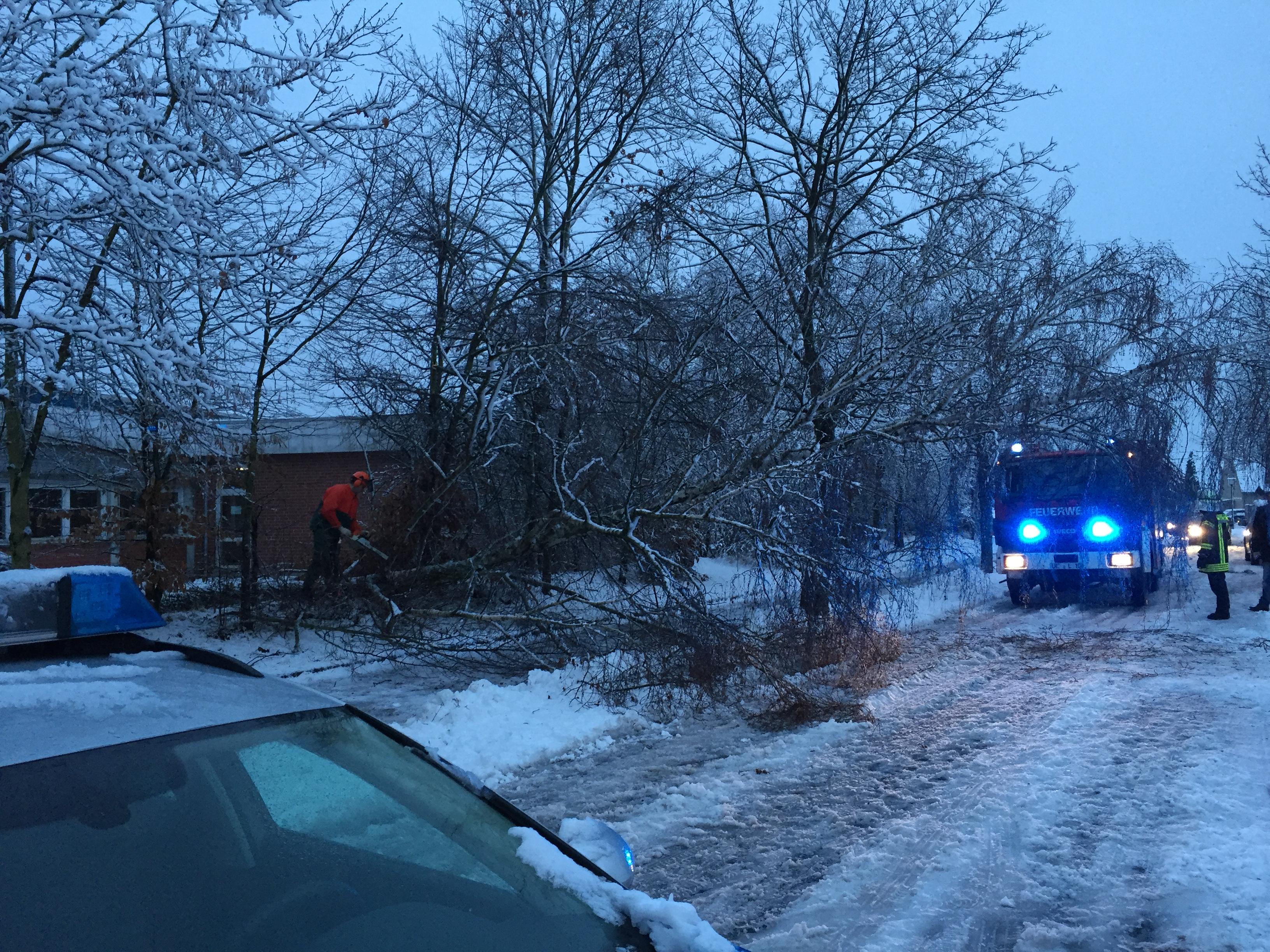 020. Baum droht auf Gehweg zu fallen