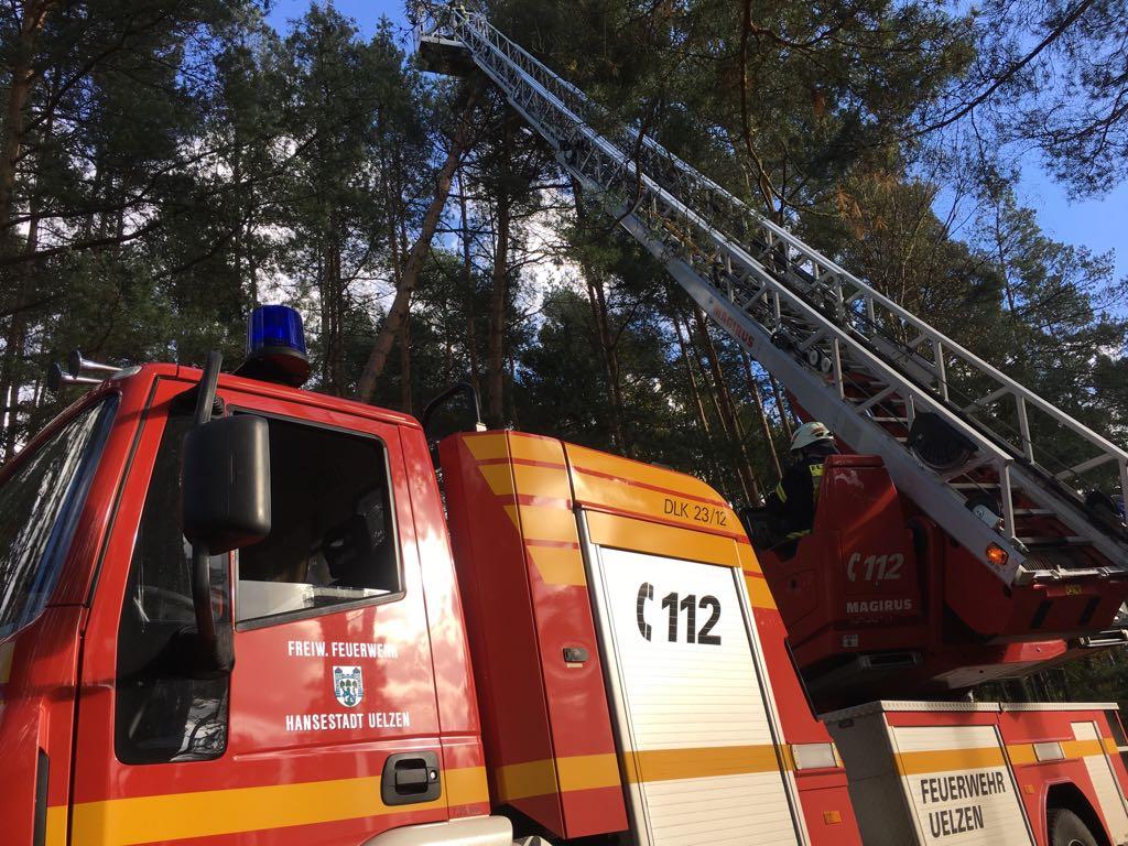 298. Hilfeleistung - - Anforderung DLK - Baum droht auf Straße zu fallen