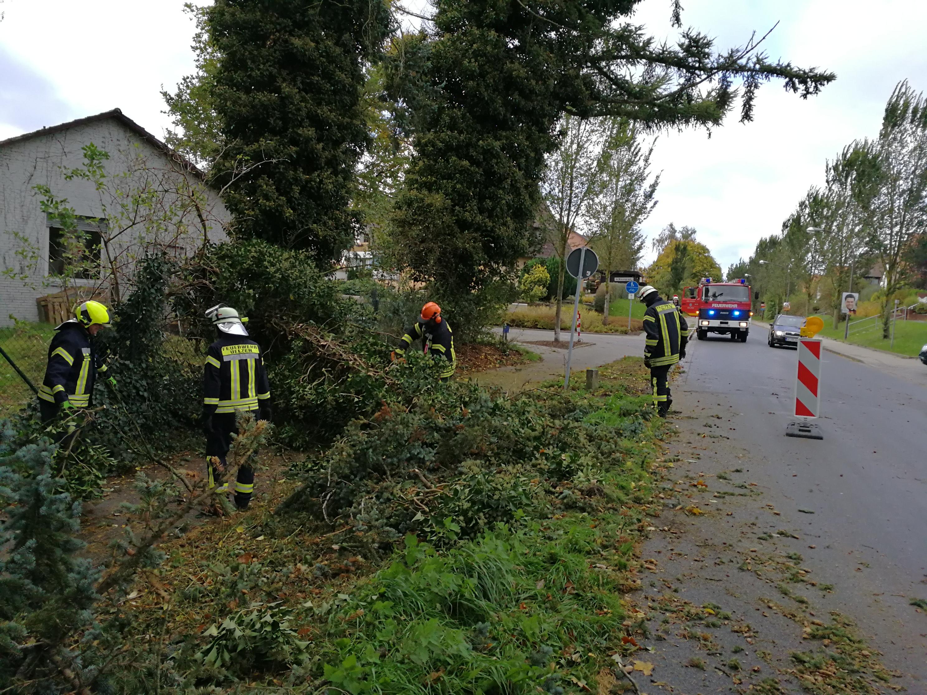 271. Hilfeleistung -- Baum auf Gehweg