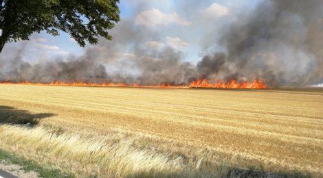 Waldbrandverhütung - Feuerwehr Uelzen gibt Ratschläge in Zusammenarbeit mit dem Waldbrandteam e.V.