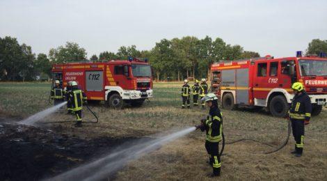 184. F1- Flächenbrand