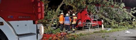 194. Verkehrsunfall Groß - eingeklemmte Person - - LKW gegen Baum